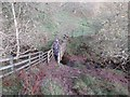 NY7887 : Footbridge over Bierhill Sike by Les Hull