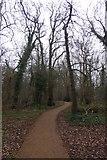 TQ1891 : Path through woodland by DS Pugh