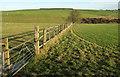 SE2350 : Field boundary, Napes Hill by Derek Harper
