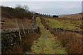 SD7991 : Pennine Bridleway approaching Garsdale Station by Chris Heaton