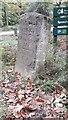 SO6212 : Old Milestone by the B4226, Speech House Road, next to car park by Milestone Society