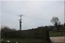 TQ4795 : Electricity pole by New Road, Lambourne End by David Howard