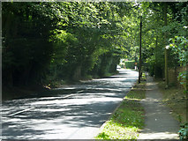 TQ4357 : Main Road, South Street by Robin Webster