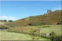 SX6937 : Hazel Tor from the valley path, South Devon by Derek Voller