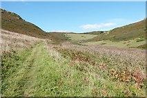 SX6937 : Footpath in the valley between Cathole Point and Hazel Tor, South Devon by Derek Voller
