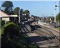 TQ8326 : Northiam Station, Kent & East Sussex Railway by N Chadwick