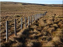 NY6645 : Moorland in Gilderdale, Alston by Andrew Smith