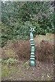NT2575 : Millennium milepost, Canonmills by Richard Webb
