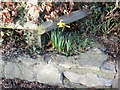 SJ1355 : Spring is on its way in Llanfair by Eirian Evans