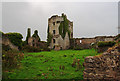R6335 : Castles of Munster: Ballygrennan, Limerick (3) by Mike Searle