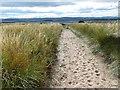 NU1635 : Northumberland Coast Path and the St Oswald's Way by Mat Fascione