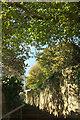 SX8570 : Path, Wolborough Hill by Derek Harper