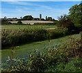 SK6731 : Disused Grantham Canal near Vimy Ridge Farm by Mat Fascione