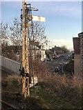 NO8686 : Semaphore Signal, Stonehaven by David Robinson
