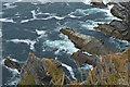 V3571 : Below the Kerry Cliffs by N Chadwick