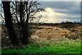 H5872 : Light breaks through clouds, Mullaghslin Glebe by Kenneth  Allen