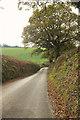 SX8351 : Bugford Lane by Derek Harper