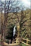NY4020 : Approaching Aira Force Waterfall by Peter Jeffery
