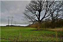 H5672 : Dark skies, Mullaghslin Glebe by Kenneth  Allen