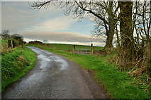 H5572 : Shinnagh Road, Bracky / Mullaghslin Glebe by Kenneth  Allen
