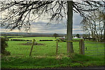 H5572 : Bracky Townland by Kenneth  Allen