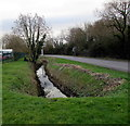 ST3485 : Reen below Nash Road, Newport by Jaggery