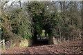 SO5729 : Occupation bridge near Fawley by John Winder