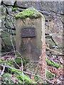 SJ2484 : Thurstaston Recreation Ground Boundary Stone #7 by John S Turner