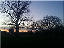 TQ1988 : Sunset over Roe Green Park by David Howard