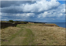 NU0149 : Heading north along the Northumberland Coast Path by Mat Fascione