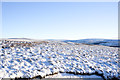 NY8542 : Snowed moorland south-east from bridleway on Burtree Fell by Trevor Littlewood