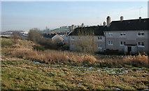 NS5160 : Houses, South Nitshill by Richard Sutcliffe