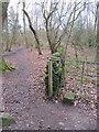 SJ2485 : Thurstaston Common wall and an NT boundary stone (1) by John S Turner