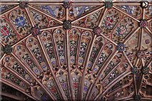 ST6316 : Sherborne Abbey: Fan vaulting detail 1 by Michael Garlick