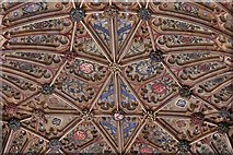ST6316 : Sherborne Abbey: Fan vaulting detail 4 by Michael Garlick