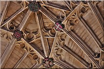 ST6316 : Sherborne Abbey: Fan vaulting detail 7 by Michael Garlick