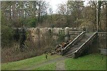 NS4276 : Steps beside Overtoun Bridge by Richard Sutcliffe
