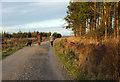 SE2352 : Walkers, Stainburn Forest by Derek Harper