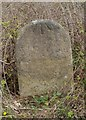 ST6990 : Old Milestone by M Faherty