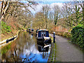 SJ2142 : Shropshire Union Canal - Llangollen Moorings by David Dixon