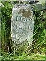 SE1285 : Old Boundary Marker by Milestone Society