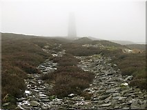 NY8154 : The eastern Allendale lead smelting flue below the northern chimney by Mike Quinn