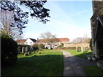 TQ7924 : St James the Great, Ewhurst Green: churchyard (g) by Basher Eyre