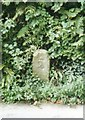 SX3182 : Old Milestone by the B3254, East Petherwin by Milestone Society