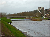 SX9192 : Exe flood relief channel and Millers Crossing by Chris Allen