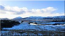 NG9239 : Saltings at Attadale by Julian Paren