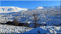 NH0651 : High in Glen Carron with Moruisg beyond by Julian Paren