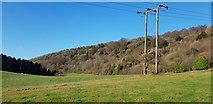 SU7225 : Lythe and Ridge Hangers by Paul Collins