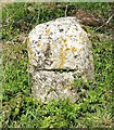 TG3700 : Old Wayside Cross by Cross Stone Road, Hardley Street by Milestone Society