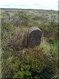 SD9620 : Old Boundary Marker on Round Hills, White Holme Moss by Milestone Society